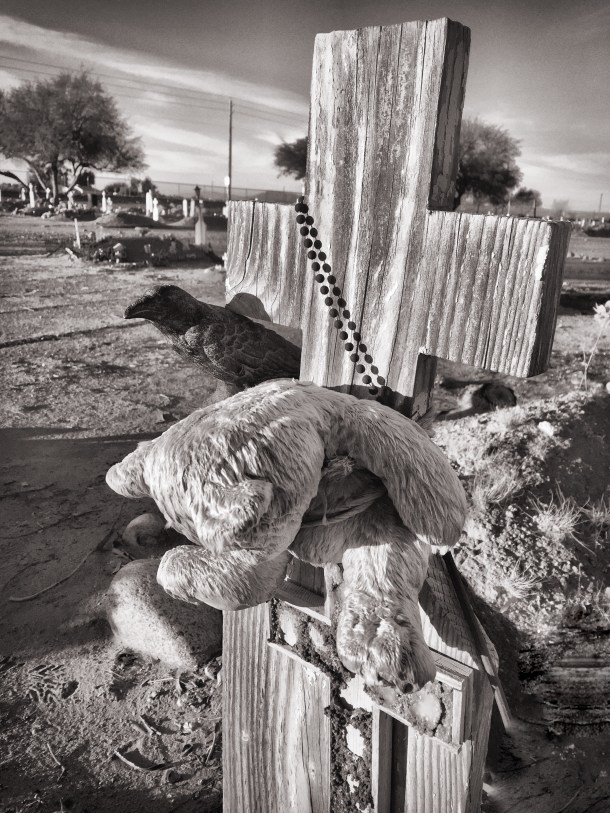Nevermore in Lehi Cemetery in Mesa, Arizona
