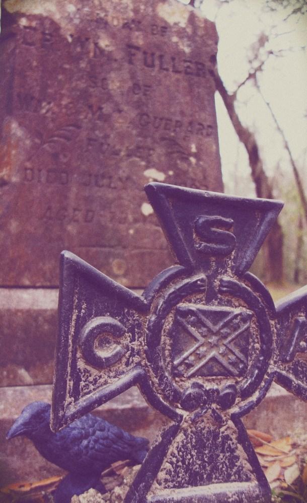 Nevermore at Sheldon Church, South Carolina