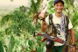 Guerrillero con la camiseta de Ka Roger. Guerra Popular Filipinas.
