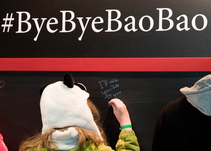 Farewell to Bao Bao