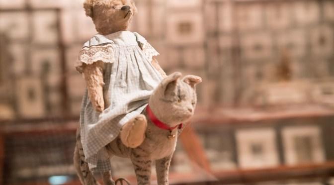The Teddy Bear Project