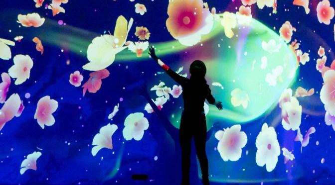 Cherry blossom fantasy