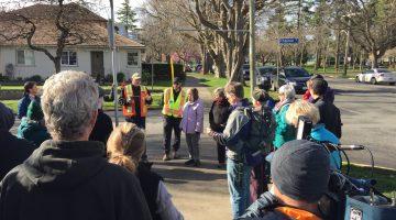 Urban forest 'walkshop' attracts diverse group