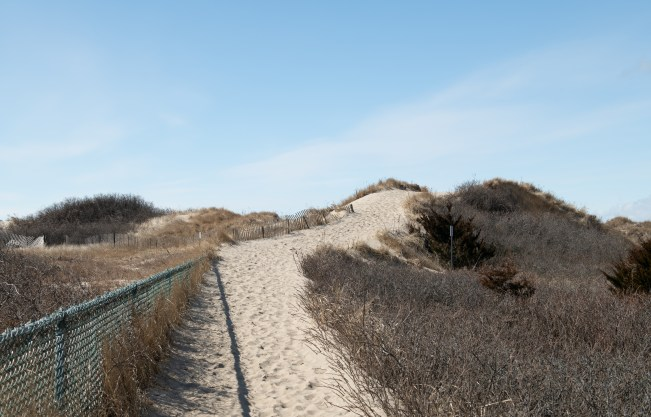 Dune Approach to the Beach