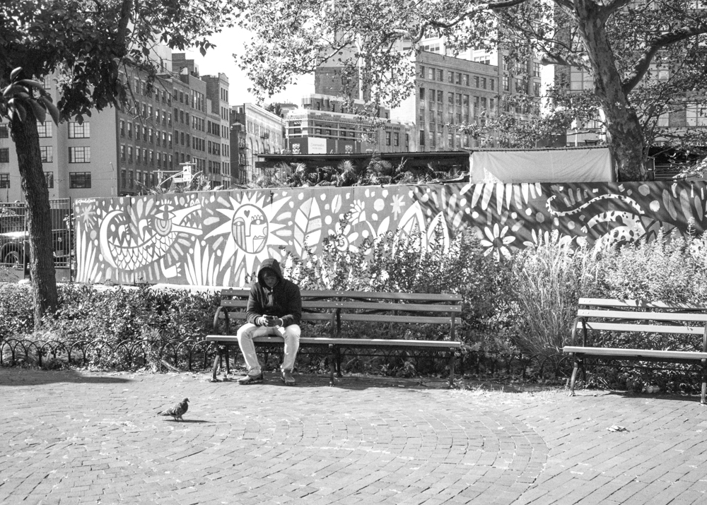 Man and Pigeon-012