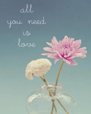 all-you-need-is-love-and-flowers-nastasia-cook