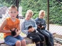 Thijs, Jesse en Mike met konijntjes op schoot