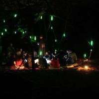 Weerwolvenspel in het donkere bos
