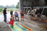 Twister in de koeienstal