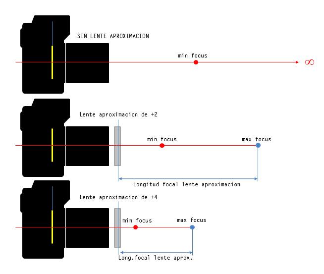 Macrofotografía: Lentes de Aproximacion / Close-Up Lens (6/6)