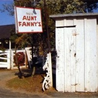 Famous in its day: Aunt Fanny's Cabin
