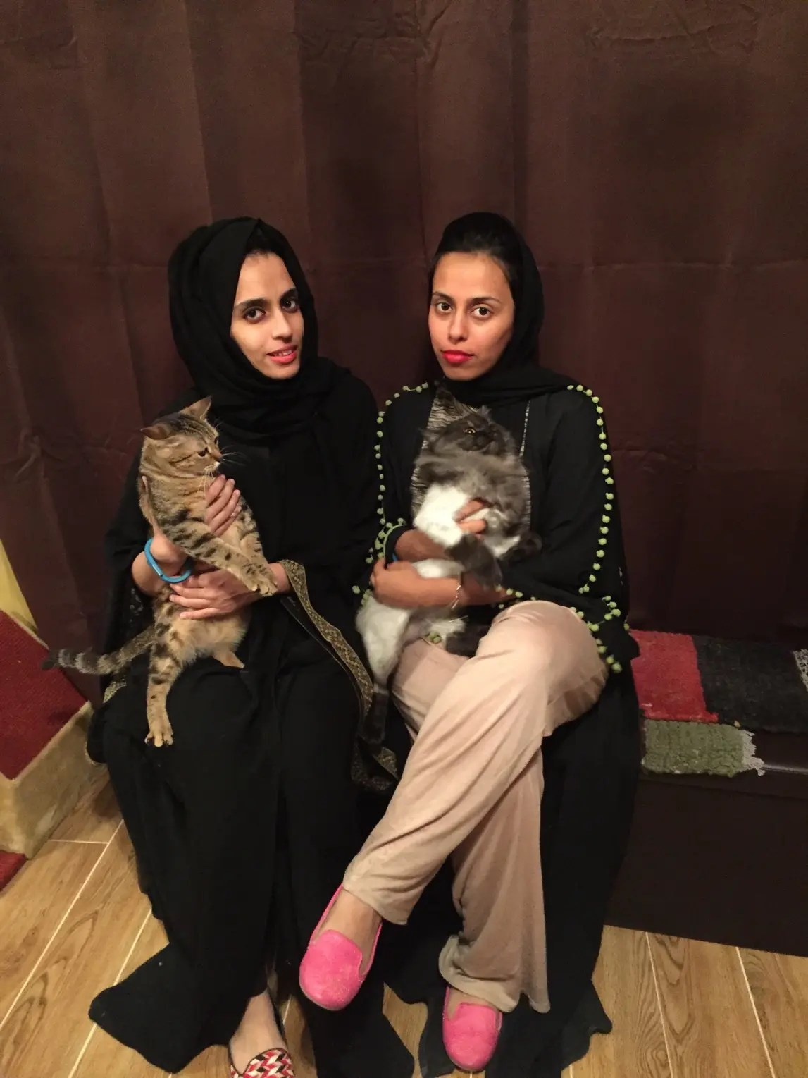 Saudi Sisters Launch Middle Easts First Cat Caf In Dubai