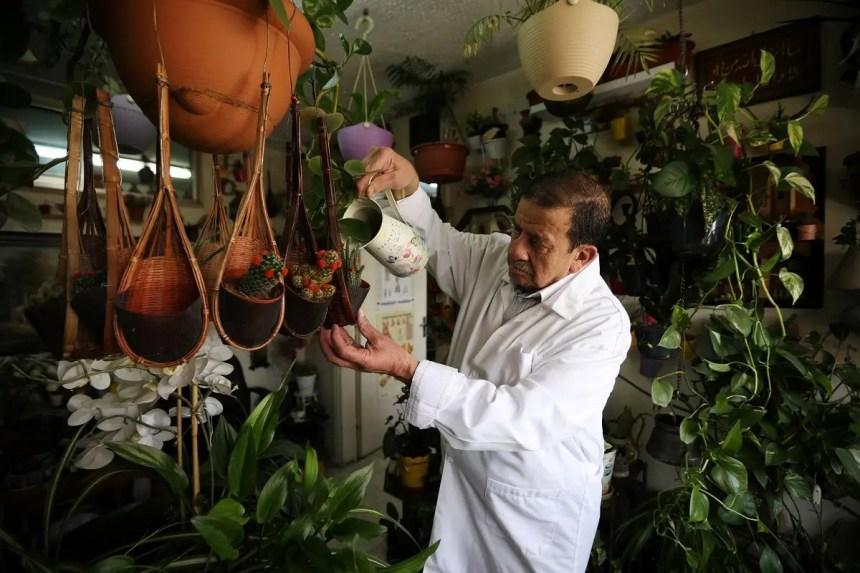 Jordanian doctor Nizar al Halaby waters his plants inside his clinic in Amman, Jordan, July 5, 2020. (Reuters)