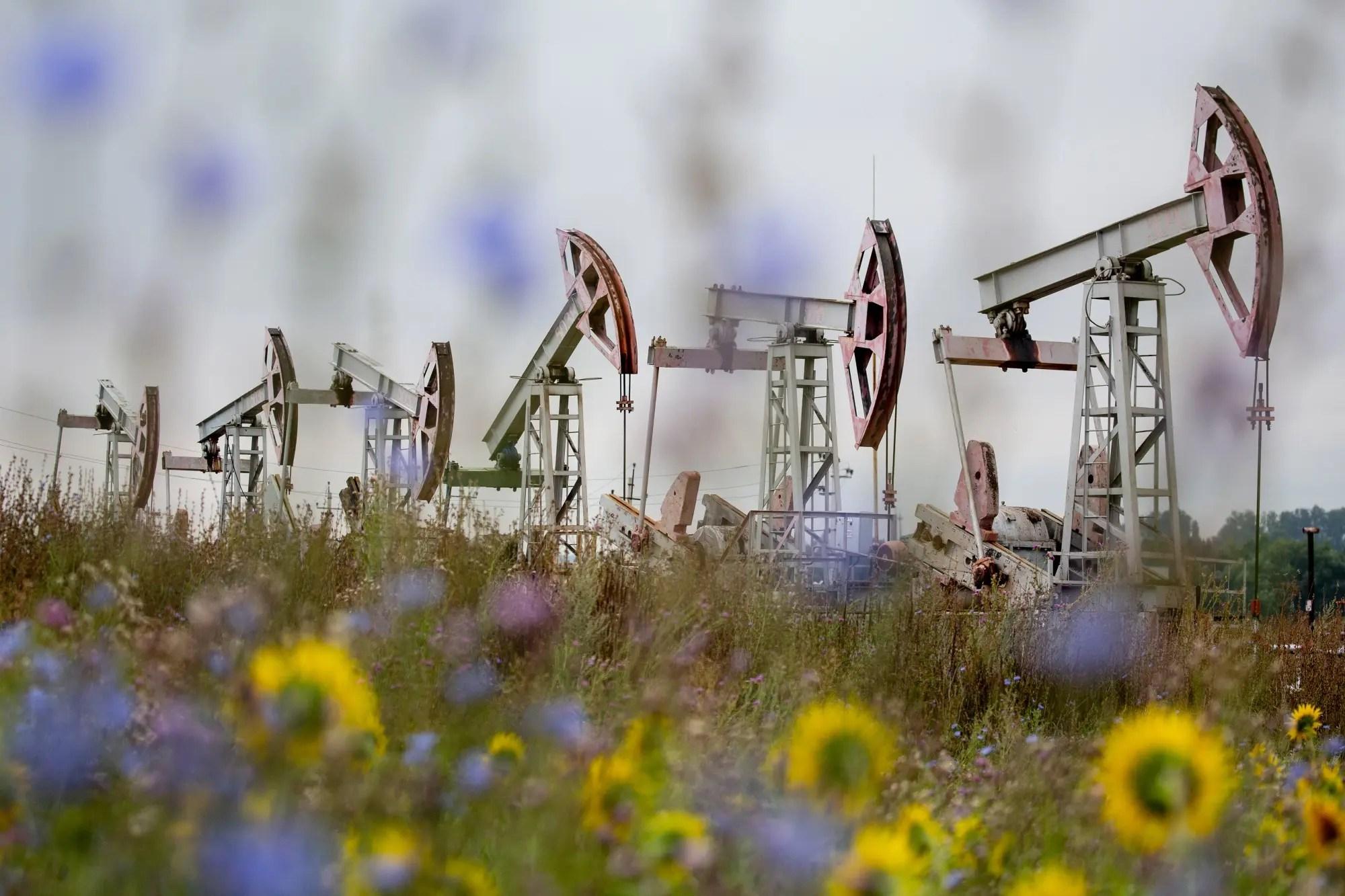 النفط يغازل 50 دولارًا بسبب ضعف الدولار وتوترات الشرق الأوسط