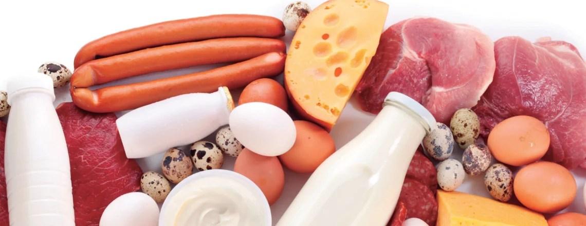 Proteína animal y su impacto en la salud