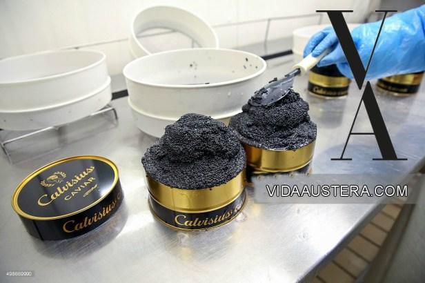 Caviar VA