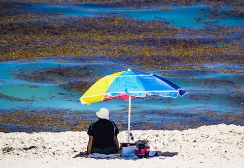 ¿Qué sucede con las playas de Quintana Roo?