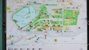 Tokyo_Ueno-Park