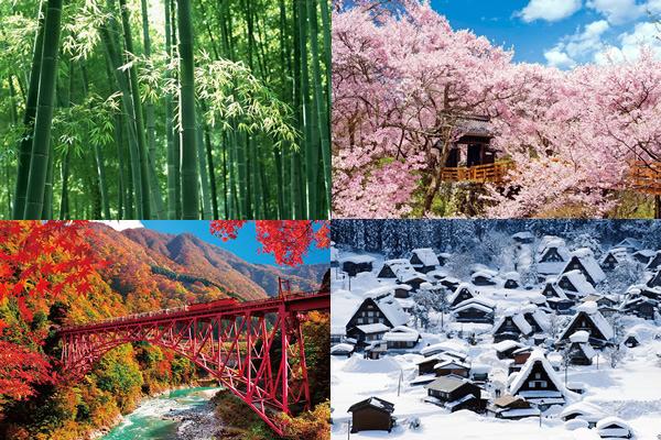 Japão_estações-do-ano