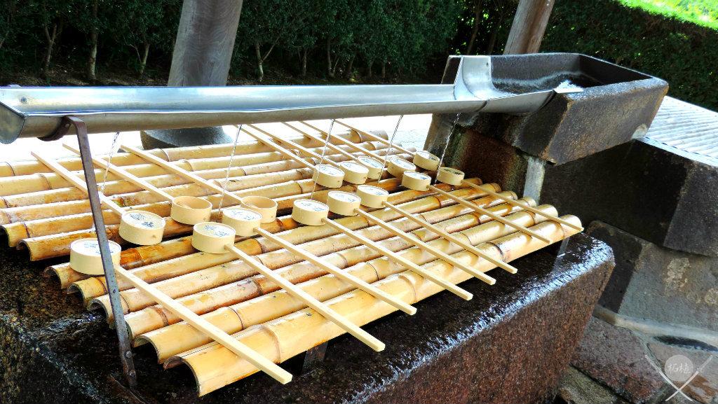 Nara Purificação