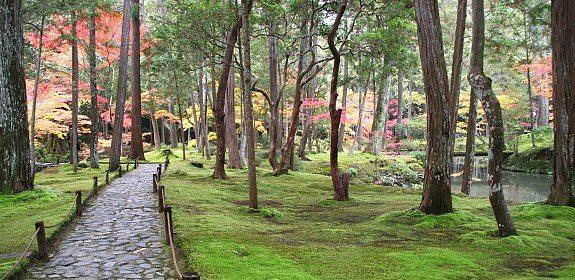 Kyoto_kokedera