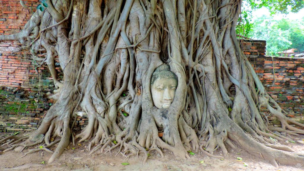 Thailand Ayutthaya Mahathat Vida de Tsuge VDT 1024x576
