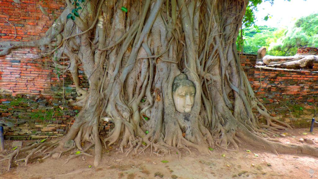 Thailand Ayutthaya Templo 7 Vida de Tsuge VDT 1024x576