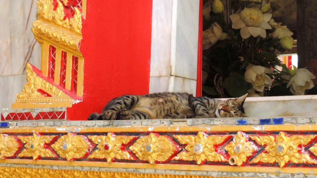 Thailand - Phuket - Wat Chalong 3 - Vida de Tsuge - VDT - 1024x576
