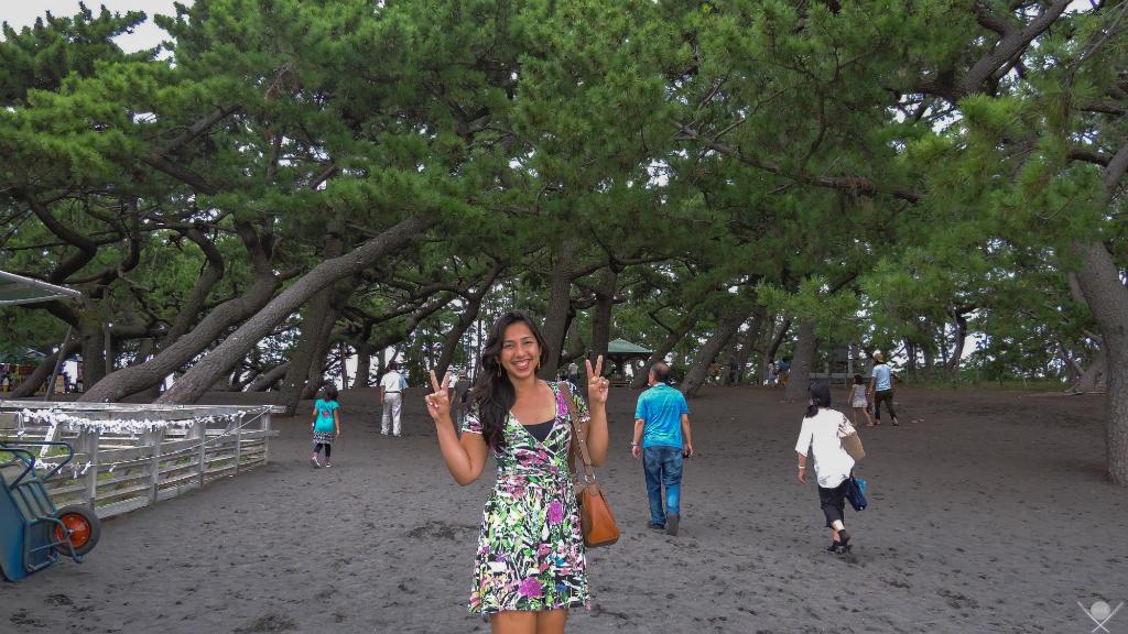 Por que o Japão é o melhor lugar para fazer sua primeira viagem sozinho - DSCN1727 - Next Stop Japão - Vida de Tsuge - VDT