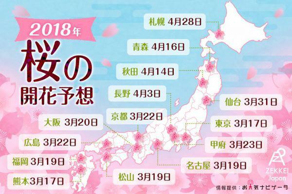 sakura season - Primavera no Japão - Vida de Tsuge