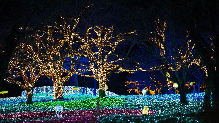 illumination-2136303_1920_Ano-novo-japão_Cultura-japonesa_Vida-de-Tsuge_VDT