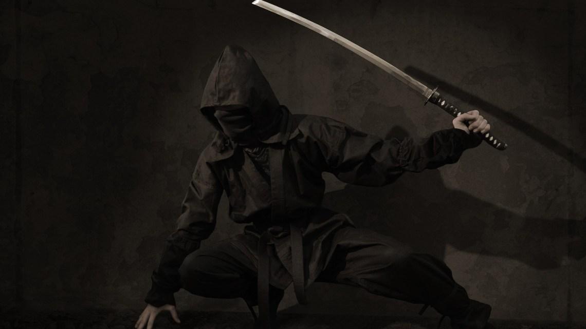 ninja_Pontos-turísticos-do-japão-desconhecidos_Viagem-japão_Vida-de-Tsuge_VDT