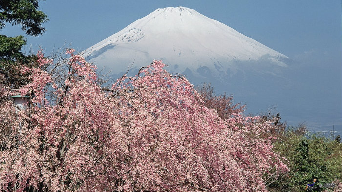 m_104074_monte-fuji_viagem-pro-japao_vida-de-tsuge_vdt