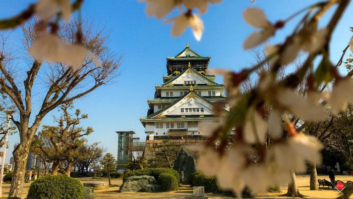 osaka-castle_explorando-o-sakura-matsuri_viagem-japao_vida-de-tsuge-vdt
