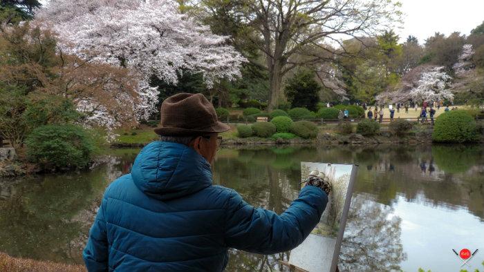 shinjuku-gyoen_explorando-o-sakura-matsuri_viagem-japao_vida-de-tsuge-vdt