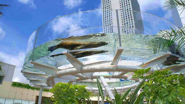sunshine-aquarium2_aquarios-no-japao_viagem-pro-japao_vida-de-tsuge_vdt
