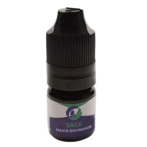 Buy Salvia Divinorum online