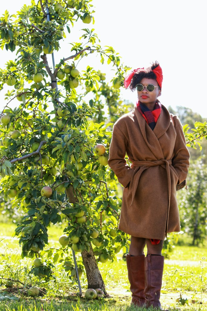 Highland Orchards8
