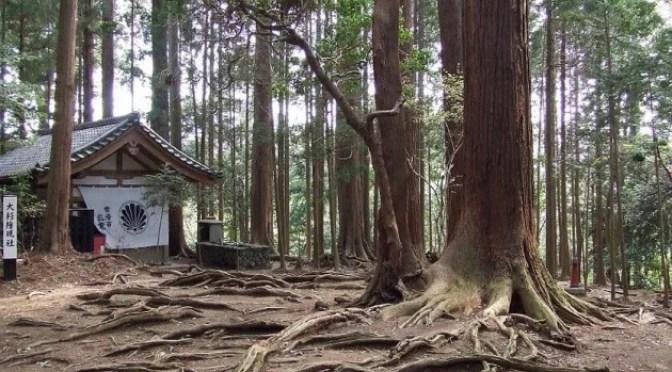 O Reiki de Mikao Usui – Breve história da origem do Reiki
