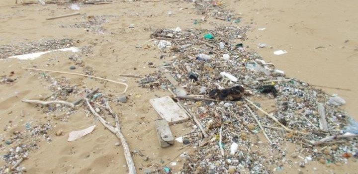 Desechos plásticos marinos por Michael Prevenios (CC-BY 4.0)