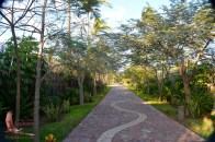 Entrance to the Botanic Garden