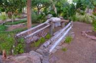 A cute little bridge/walkway in the Botanic Garden