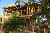 A cabaña under construction in the Botanic Garden