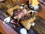 Oaxacan Tamales with Black Mole