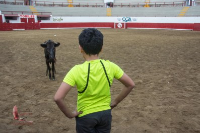 Emiliano facing the calf