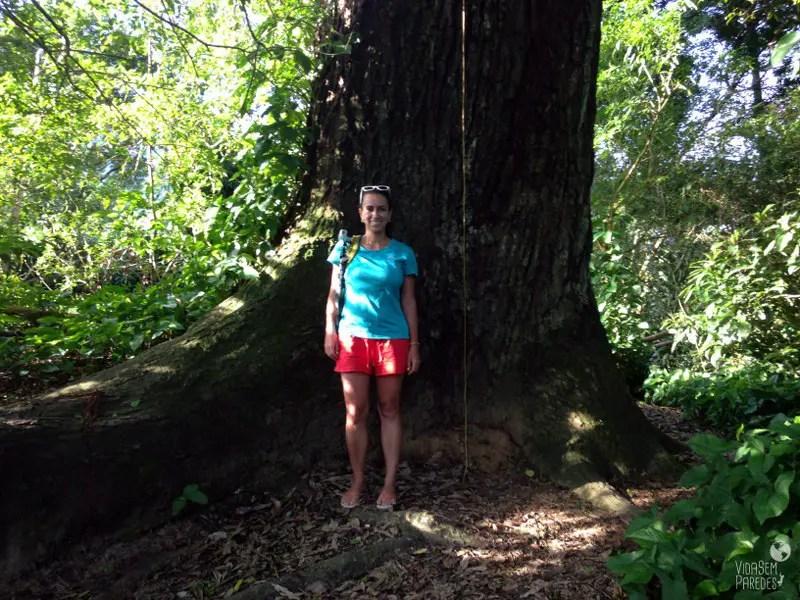 Vida sem Paredes - Sana - Macaé - RJ(13)