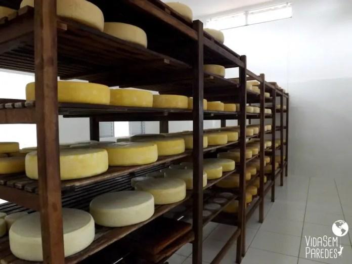 Fazendas de Queijo Canastra em Minas Gerais