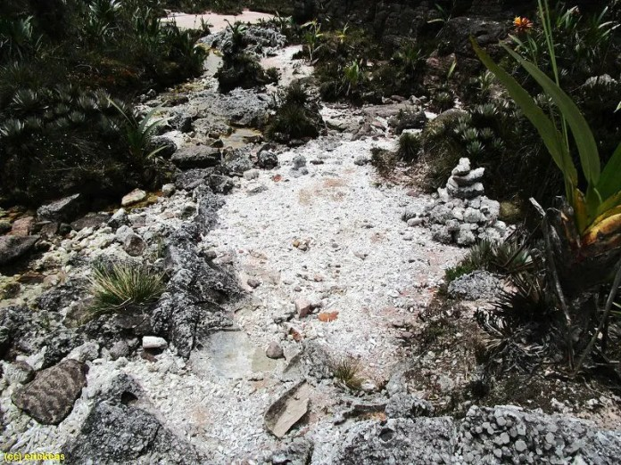 Atrações no Monte Roraima: Valle de los Cristales