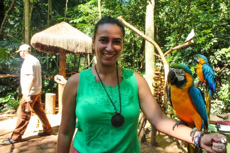 O que fazer em Foz do Iguaçu: Parque das Aves