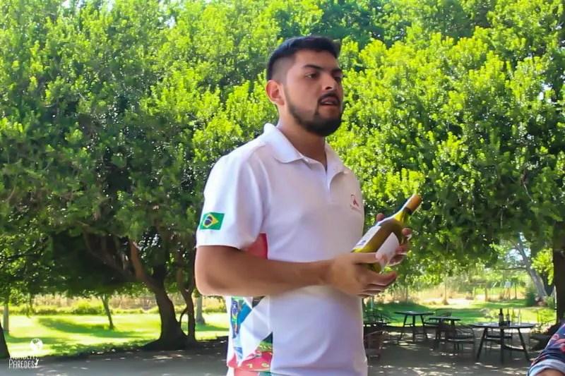Rota do Vinho no Chile: tour no Valle de Casablanca - Agência Destino Chile
